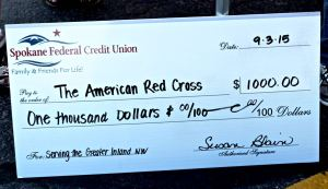 credit union check - used on blog post