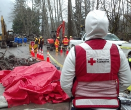 Red Cross worker Jennifer Ramieh looks out over the landslide response efforts.