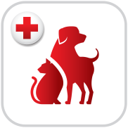 app-icon-petsafety