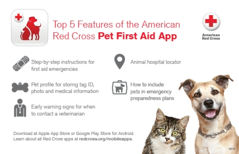 Pet-First-Aid-App-Infographic