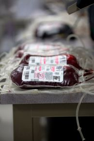 Blood Products 2013