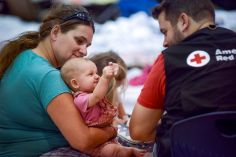 "October 13, 2018. Bozeman High School Red Cross operated shelter. Panama City, Florida Danielle's daughter Harper turned six months old the day Hurricane Michael made landfall. Her family evacuated on October 9, 2018 and has not returned home yet to assess the damage. This is the third hurricane her family has experienced in three years: first in Jacksonville in 2016 and again in Georgia in 2017. ""This is way worse"" says Danielle. ""But it's a lot easier now that we have somewhere to sleep."" As Red Cross shelter workers bring more jars of baby food to her family's gathering of cots, she turned to her 3-year old Daughter Makinzy and said ""I hope your school's ok."" Photo by Daniel Cima/American Red Cross"